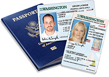 Examples of valid government IDs