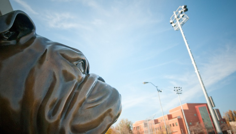 A profile view of the Gonzaga Bulldog.
