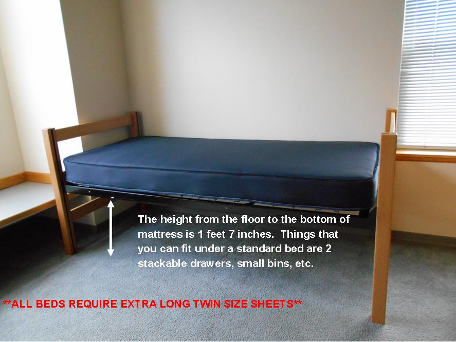 standard bed height