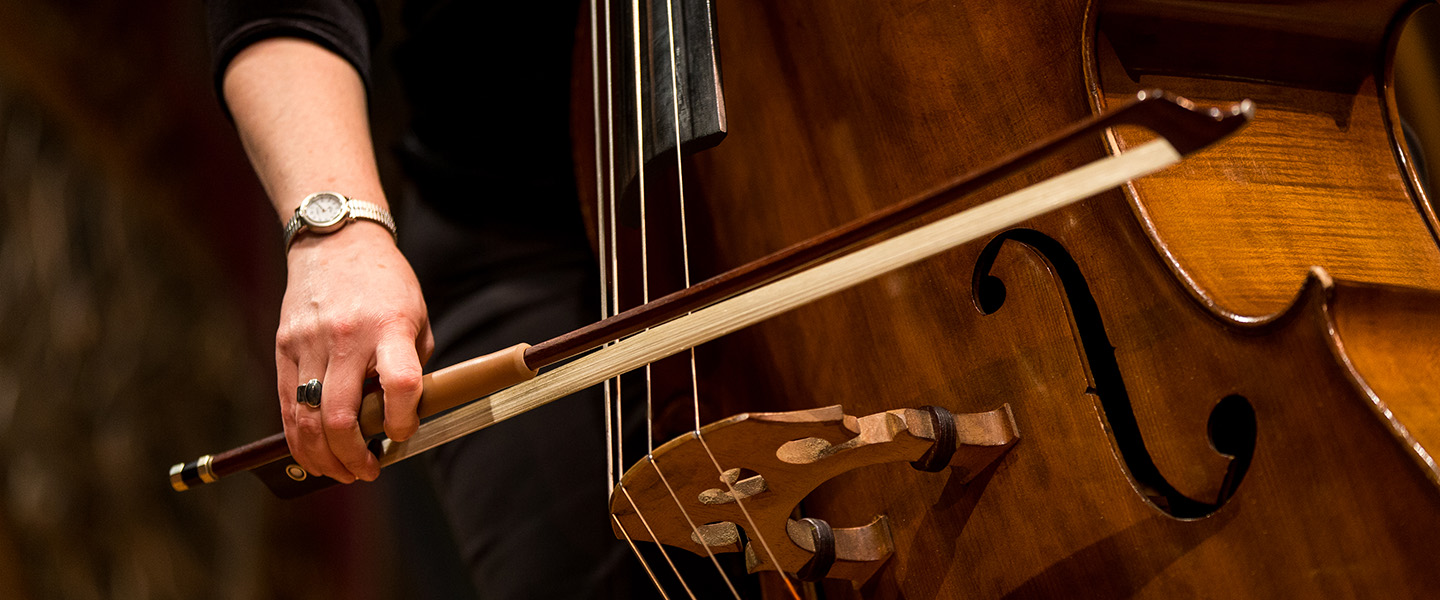Decorative image. Close up view of double bass being played.