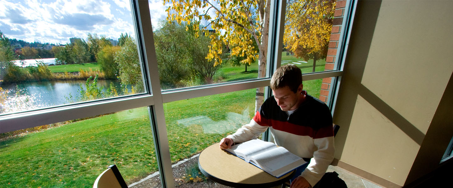 Student studying in Jepson Lounge