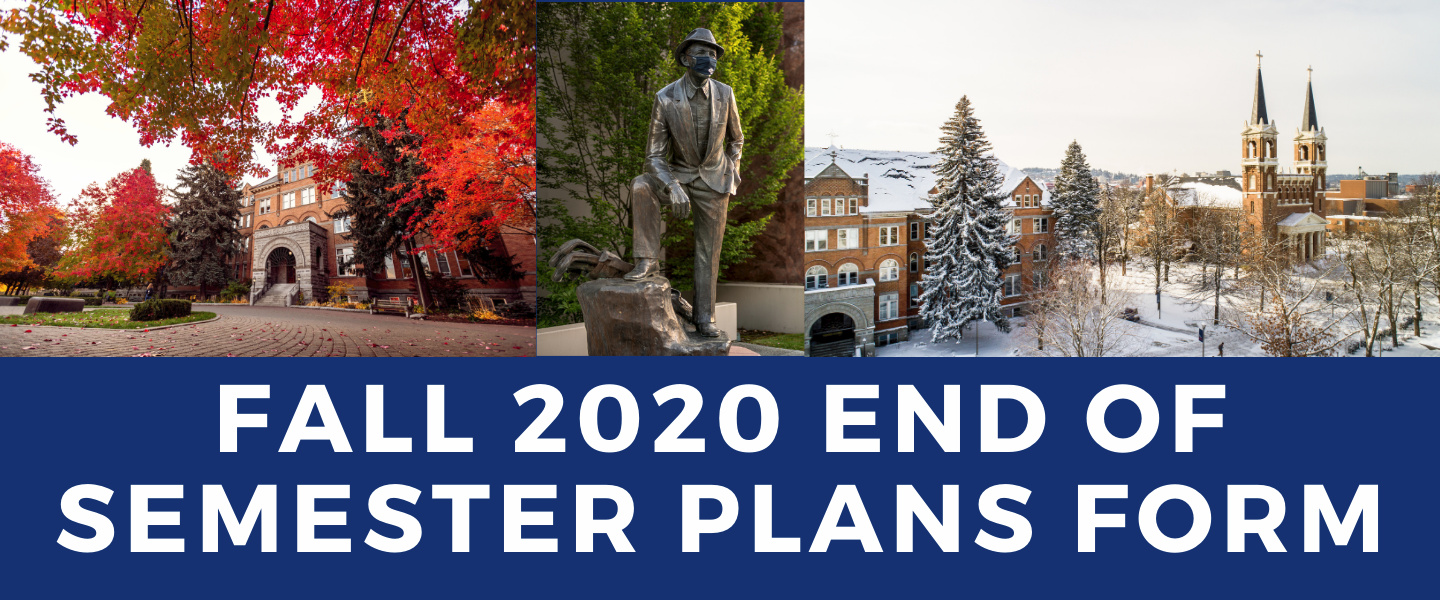 Fall 2020 End of Semester Plans Form