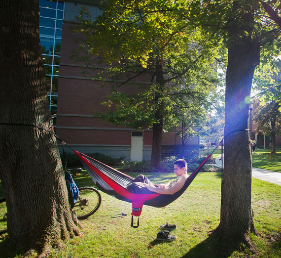 student studying in hammock