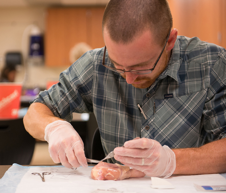 A nursing student practices stitches on a piece of chicken.