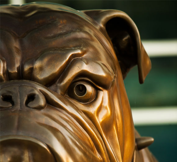 Statue of spike the bulldog