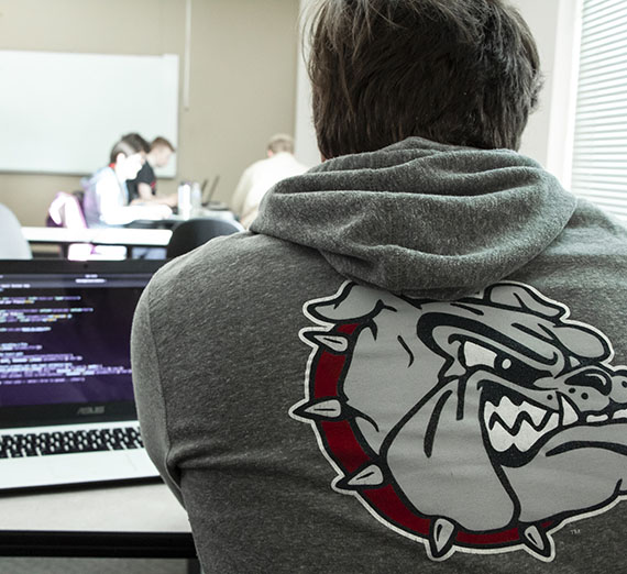 bulldog hoodie with computer