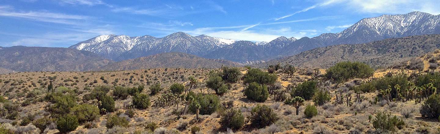 Hight Desert near Valyermo, California