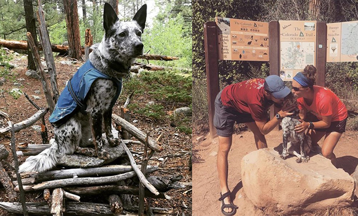 Left photo shows Aska the dog in a coat. Right photo shows Devereaux and Williams kissing their dog at the trailhead.