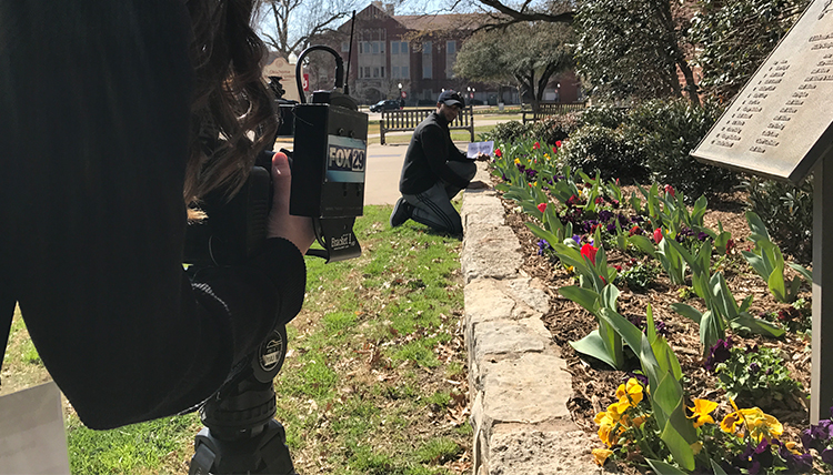 camera woman filming a man kneeling by a bed of tulips on a sunny day