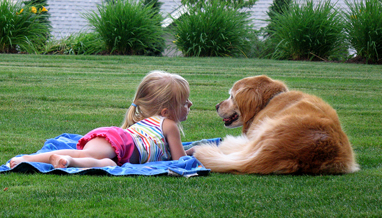 child and golden retriever lie on the ground together