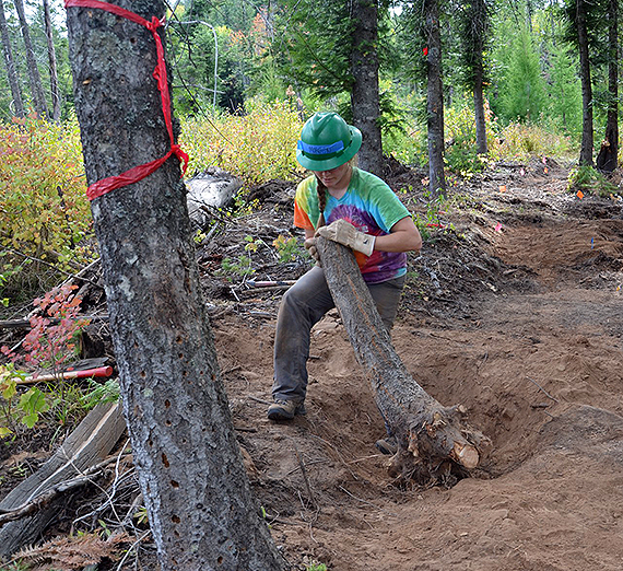 A Gonzaga student in an environmental studies course helps build a new trail with the Washington Trails Association on the recently acquired Mica Peak conservation land. (Photo courtesy Professor Greg Gordon)
