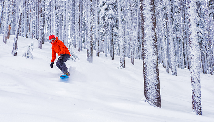 A man snowboards through snow covered trees on a snowy slope.