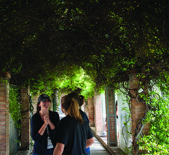 Students chat while touring a vineyard in Florence, Italy.
