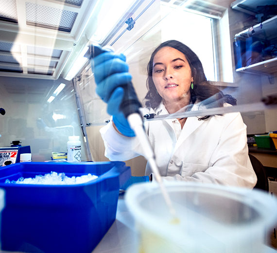 A student measures chemicals in a pipette under a fume hood in a biology lab.