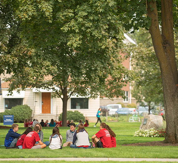A group of students sits in a circle on the grass, under a tree.