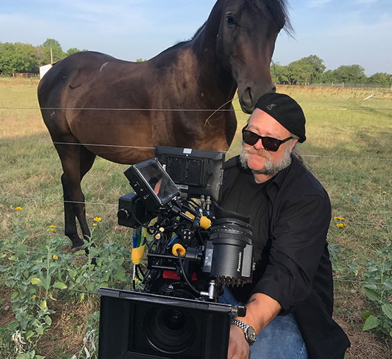 horse looks over shoulder of camera operator
