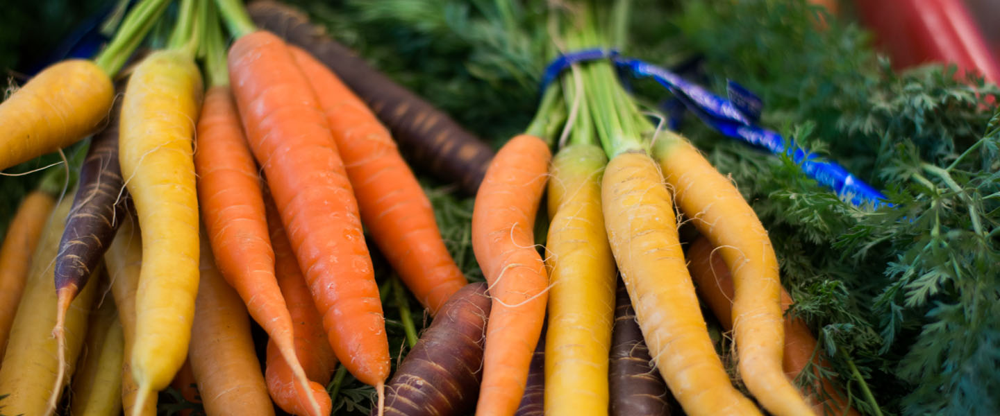 Fresh carrots delivered to dining hall